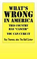 What's Wrong in America: This Country Has Cancer You Can Cure It