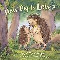 How Big Is Love Padded Board Book