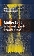 M?ller Cells in the Healthy and Diseased Retina