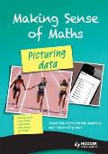 Making Sense of Maths: Picturing Data - Student Book: Collecting, Representing, Analysing and Interpreting Data