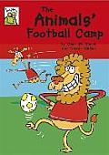 The Animals' Football Camp