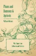 Plums and Damsons & Apricots - With Chapters on Cultivation and Varieties