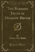 The Bobbsey Twins at Meadow Brook (Classic Reprint)