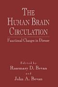 The Human Brain Circulation: Functional Changes in Disease
