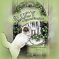 Lucy a Special Ragdoll
