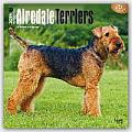 Airedale Terriers 2016 Calendar