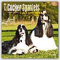 Cocker Spaniels 2016 Calendar