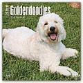Goldendoodles 2016 Calendar