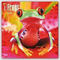 Frogs 2016 Calendar