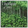 The Majesty of Trees 2016 Calendar