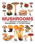 Mushrooms How to Identify & Gather Wild Mushrooms & Other Fungi