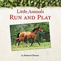 Little Animals Run and Play