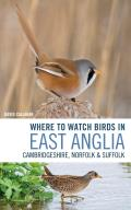 Where to Watch Birds in East Anglia: Cambridgeshire, Norfolk and Suffolk