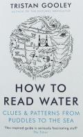 How To read Water Clues & Patterns from Puddles to Sea