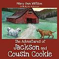 The Adventures of Jackson and Cousin Cookie