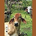 Everyday Haiku