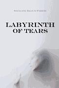 Labyrinth of Tears