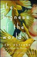 Bigness of the World Stories