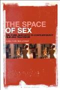 The Space of Sex: The Porn Aesthetic in Contemporary Film and Television