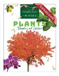 Plants: Wonders of Nature Workbook