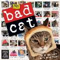 Cal21 Bad Cat Wall Calendar 2021