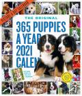 Cal21 365 Puppies A Year Picture A Day Wall Calendar 2021
