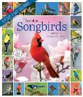Audubon Songbirds and Other Backyard Birds Picture-A-Day Wall Calendar 2022: Your Daily Sighting of Songsters That Bring Color, Joy, and Sweet Melodie