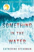 Something in the Water A Novel