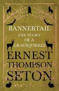 Bannertail - The Story of a Gray Squirrel
