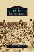 Cotton on the South Plains
