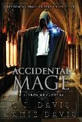 Accidental Mage: Accidental Traveler Litrpg Fantasy Book 3