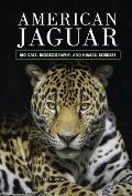American Jaguar: Big Cats, Biogeography, and Human Borders