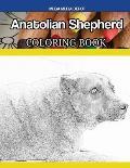 Anatolian Shepherd Coloring Book
