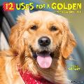 12 Uses for a Golden 2021 Wall Calendar (Dog Breed Calendar)