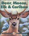 Deer Moose Elk & Caribou