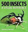 500 Insects A Visual Reference