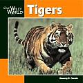 Our Wild World Tigers