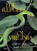 Reptiles Of Virginia