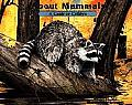 About Mammals Guide For Children