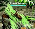 About Insects A Guide For Children