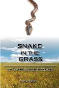 Snake in the Grass An Everglades Invasion