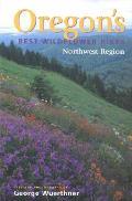 Oregons Best Wildflower Hikes Northwest