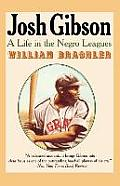 Josh Gibson A Life In The Negro League