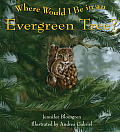 Where Would I Be In An Evergreen Tree