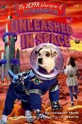 Wishbone Super 3 Unleashed In Space
