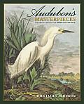 Audubons Masterpieces