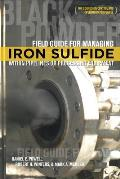 Field Guide for Managing Iron Sulfide (Black Powder) Within Pipelines or Processing Equipment: For Corrosion Control and Operations Personnel