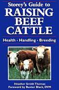 Storeys Guide to Raising Beef Cattle Health Handling Breeding