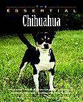 Essential Chihuahua