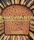 Bread Comes to Life A Garden of Wheat & a Loaf to Eat
